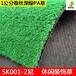 广州尼龙PA材质人造草坪休闲装饰人工短草幼儿园塑料假草