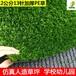 景观绿化仿真草2公分三色耐晒耐淋高寿命人工草室内外假草皮