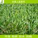 广东休闲阳台人造草坪四色春草天台人工草皮景观绿化塑料草