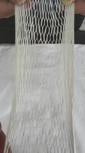廠家直銷PP填充繩產品,價格優惠圖片
