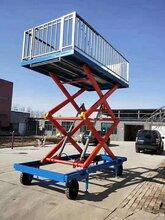 12吨转猪升降机升降平台液压电动型