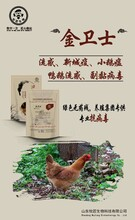雞呼吸道感染用什么藥—雞呼吸道病怎么治—牧匠囊先鋒圖片