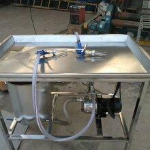 鹽水注射機機,手動鹽水注射機報價,全自動鹽水注射機。圖片