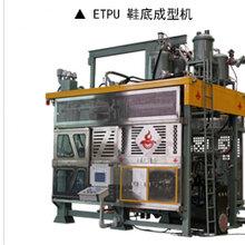 快速自動換模EPS成型機EPS蔬菜水果海鮮泡沫箱生產機器