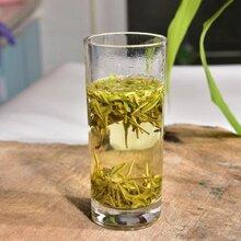 安吉白茶与福鼎白茶的区别图片