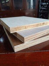 雙飾面細木工板實木生態板圖片