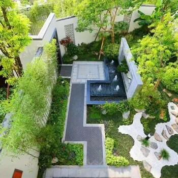 广州绿植租赁/绿植租摆/室内盆栽租赁/办公室绿植