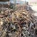 漕泾镇回收无缝钢管-附近的公司回收