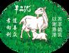 羊之精品羊品優+社區直營店全國招商加盟
