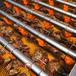 廠家直供乳山扇貝清洗機貝類水產品清洗設備牡蠣清洗線