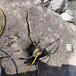 新北土石方開挖靜態破石開挖現場廠家愚公斧