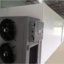 食品空气能烘干机食品热风循环烘干箱食品干燥设备图片