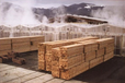 木材烘干設備廠家木材干燥設備空氣能熱泵箱式烘干機