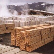 木材烘干设备厂家木材干燥设备空气能热泵箱式烘干机