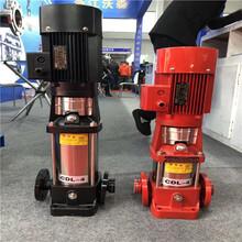 一1噸蒸汽鍋爐高原防爆電機泵耐高溫補給熱水泵