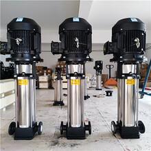 配用15十五噸16公斤1.25mpa蒸汽鍋爐補給水泵