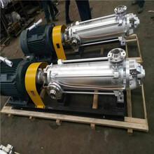 25噸蒸汽鍋爐BLT水泵不銹鋼立式多級泵離心補給水泵
