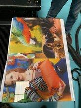 高温数码彩釉玻璃打印机图片