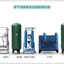 广州佳环电器科技竞博国际200g制氧机臭氧发生器图片