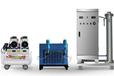 臭氧發生器300G蜂窩式制造臭氧的機器殺菌消毒機