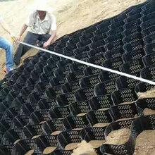 筑基斜坡防护蜂窝HDPE土工格室堤坝河道治理防护HDPE塑料土工格室网图片
