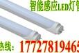 黑龍江微波LED雷達燈管黑龍江LED地下室專用燈管