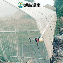 吐鲁番蔬菜薄膜温室厂家