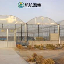 固原新型连体薄膜温室厂家