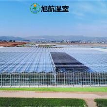 海東中空玻璃溫室廠家直銷圖片
