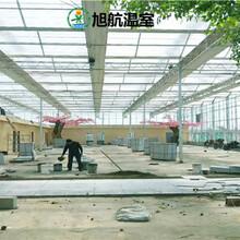 西宁生态观光玻璃大棚厂家价格