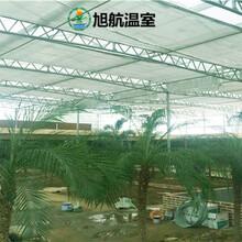 咸陽生態種植大棚廠家價格圖片
