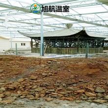 榆林生態種植大棚廠家圖片