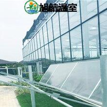 商洛陽光板花卉大棚廠家直銷圖片