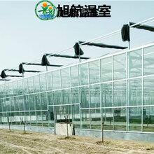 慶陽陽光板農業大棚廠家直銷圖片