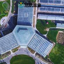 商洛歐式玻璃溫室廠家報價圖片