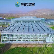 榆林歐式玻璃溫室廠家圖片