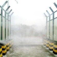 养殖场车辆消毒通道喷雾对非洲猪瘟预防的作用重庆水雾图片
