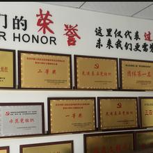 房地产行业荣誉证书