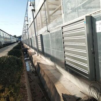 阳光温室风机