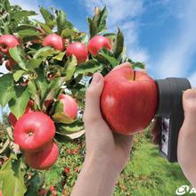 日本ATAGO(爱拓)苹果水果无损糖度计PAL-HIKARi5?#35745;? />                 <span class=