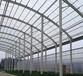 浙江杭州溫室采光瓦PC透明瓦采光屋面瓦塑料瓦廠家直銷