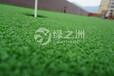 綠之洲人造草坪,幼兒園環保草坪,人造草皮廠家