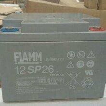 武汉非凡蓄电池12SP2612V26AH