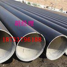 海口 大口径涂塑钢管厂家(创新)图片