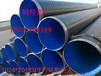 辽阳 涂塑钢管厂家(技术;资讯)