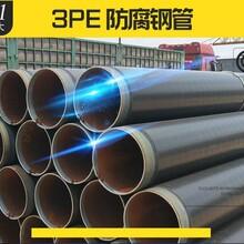 荆州 法兰式连接涂塑钢管厂家图片