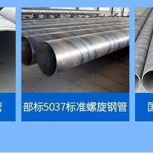 福建 钢套钢保温钢管厂家保证质量图片