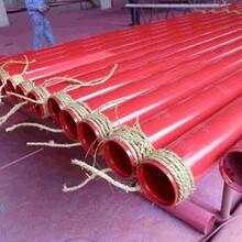 推薦:白城  消防涂塑鋼管廠家代理圖片