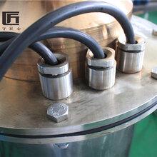 天津智匠泵业海水潜水泵海上平台专用350QH450-69-180KW