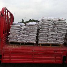超细水泥最新价格超细水泥多少钱一吨图片